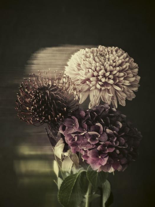 Werk: Flower
