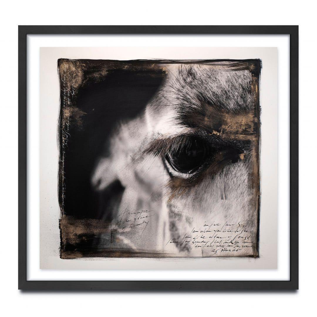 Werk: The Giraffe`s eye // UNIKAT