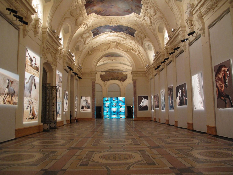 Einzelausstellung Petit Palais UNDERWATER HORSES // PARIS 2019